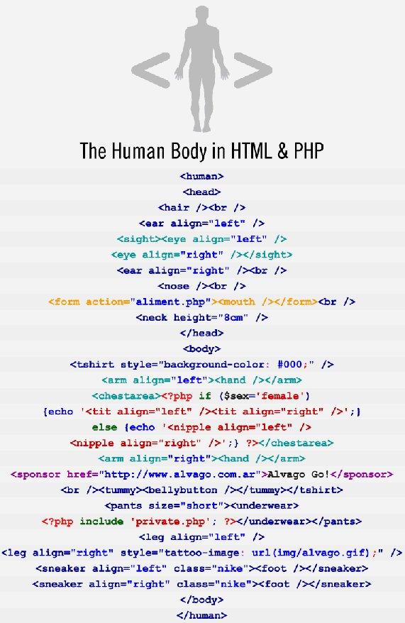 El cuerpo humano en html y php